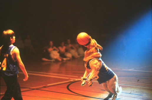 airbud.png